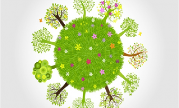 APPROACH TO TEACHING ENVIRONMENTAL EDUCATION IN SCHOOLS