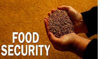 RAPID URBANIZATION AND FOOD SECURITY