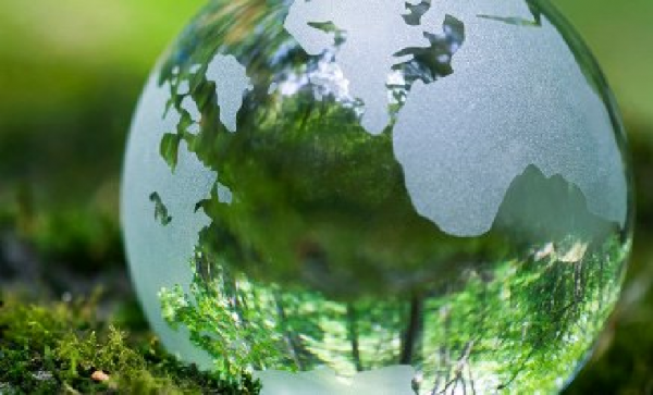 Formal Environmental Education