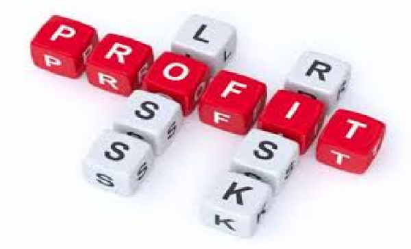 PROFITS COME FROM TAKING BUSINESS RISKS