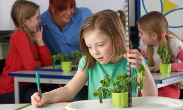 Importance of practical learning in education system